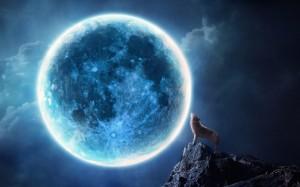 wallpaper-van-een-huilende-wolf-bij-volle-maan 2